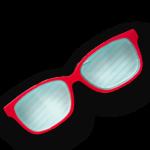 les lunettes de la celebre conferenciere stephanie Vial