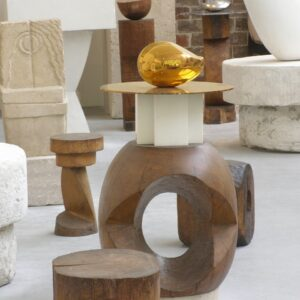 brancusi visio conference replay